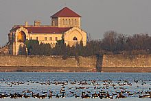 Birdwatching Holiday - NEW! Hungary - autumn short break