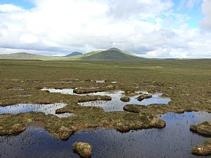 NEW! Orkney and the Flow Country
