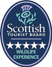 Visit Scotland - 5 star wildlife experience