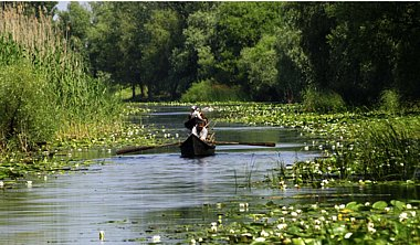 Birdwatching Holiday - Romania and the Danube Delta