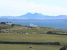 Birdwatching Holiday - Southern Hebrides from Colonsay to Islay